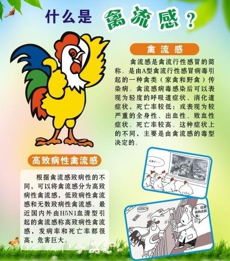 红会专家支招:预防h7n9禽流感病毒的10个小诀窍