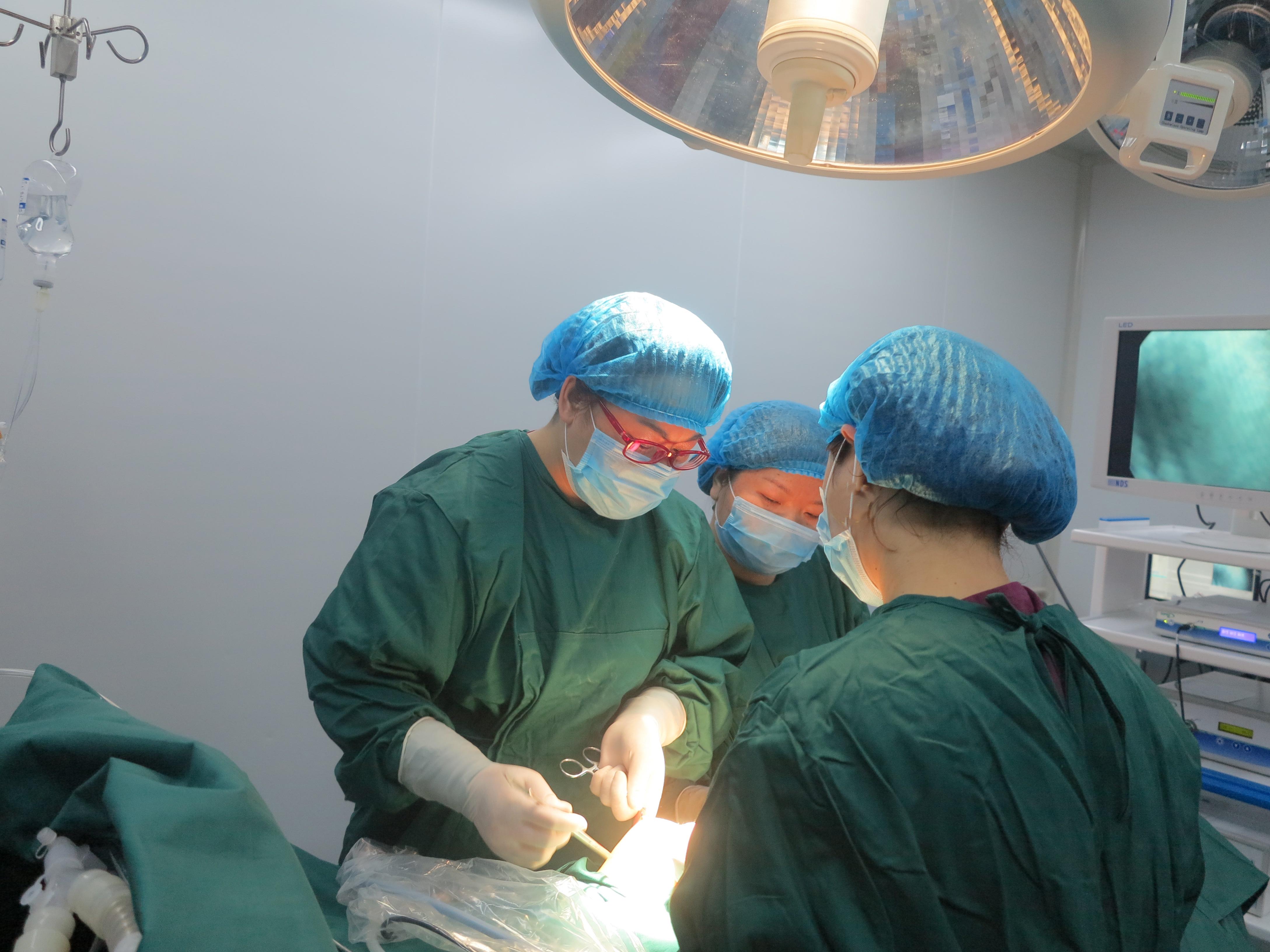 圖為燕向紅主任在手術室認真為患者做手術圖片